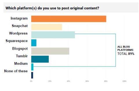 Unique Content wird überwiegend auf Blogs oder Instagram geteilt.